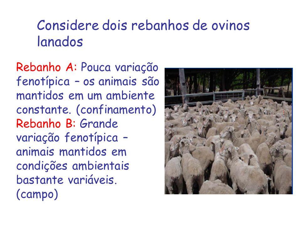 Considere dois rebanhos de ovinos lanados