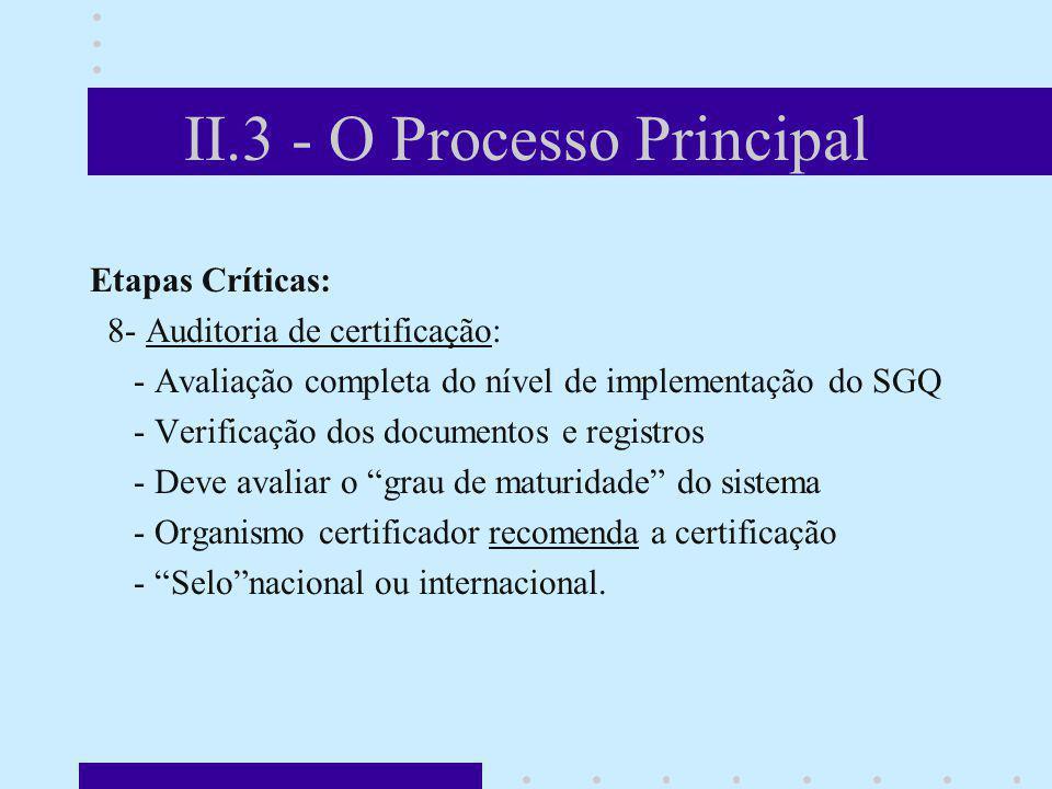 II.3 - O Processo Principal