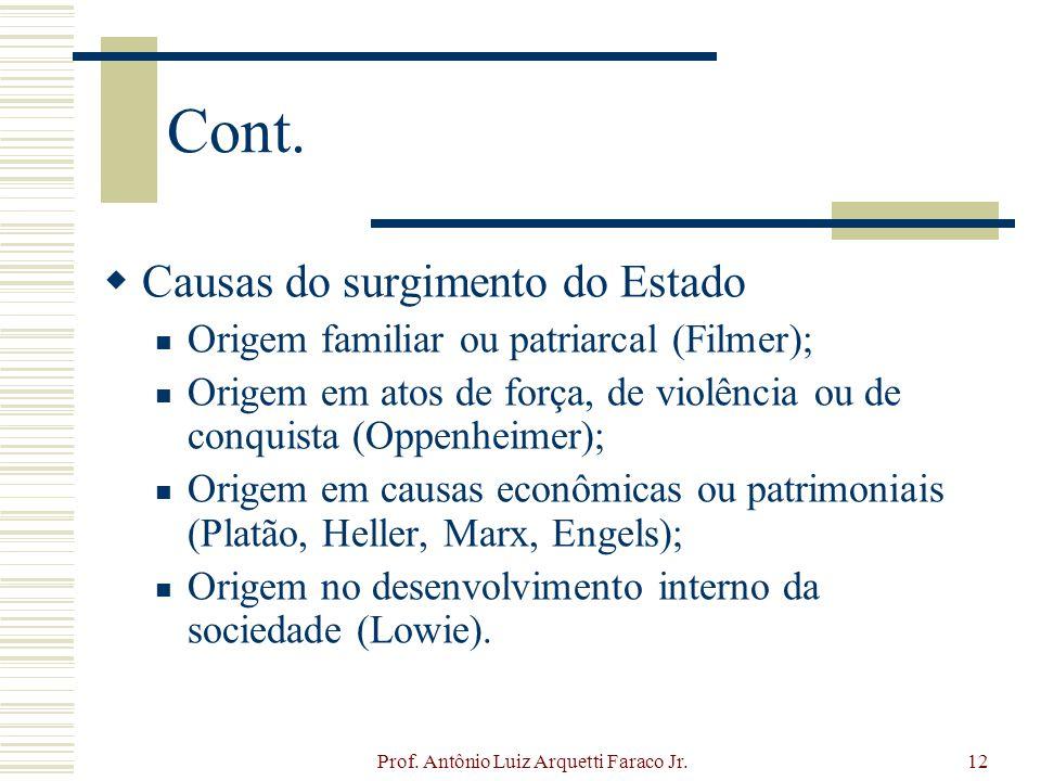 Prof. Antônio Luiz Arquetti Faraco Jr.