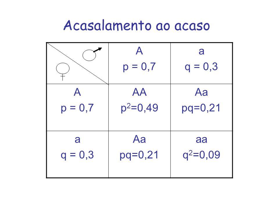Acasalamento ao acaso A p = 0,7 a q = 0,3 AA p2=0,49 Aa pq=0,21 aa