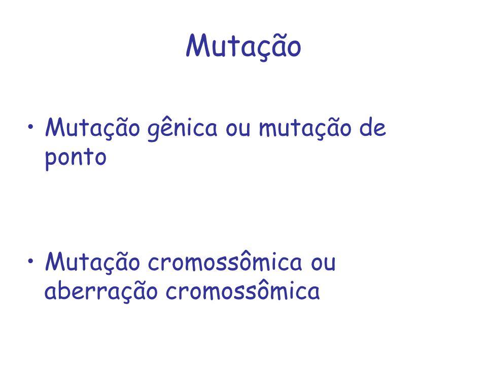 Mutação Mutação gênica ou mutação de ponto
