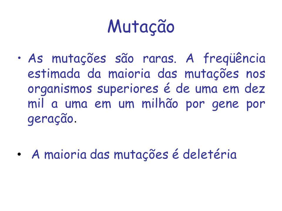 Mutação