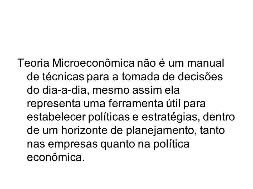 Teoria Microeconômica não é um manual de técnicas para a tomada de decisões do dia-a-dia, mesmo assim ela representa uma ferramenta útil para estabelecer políticas e estratégias, dentro de um horizonte de planejamento, tanto nas empresas quanto na política econômica.
