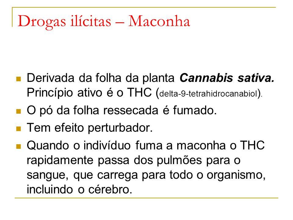 Drogas ilícitas – Maconha
