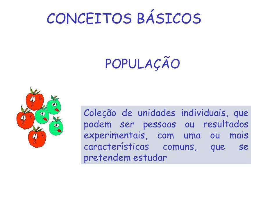 CONCEITOS BÁSICOS POPULAÇÃO