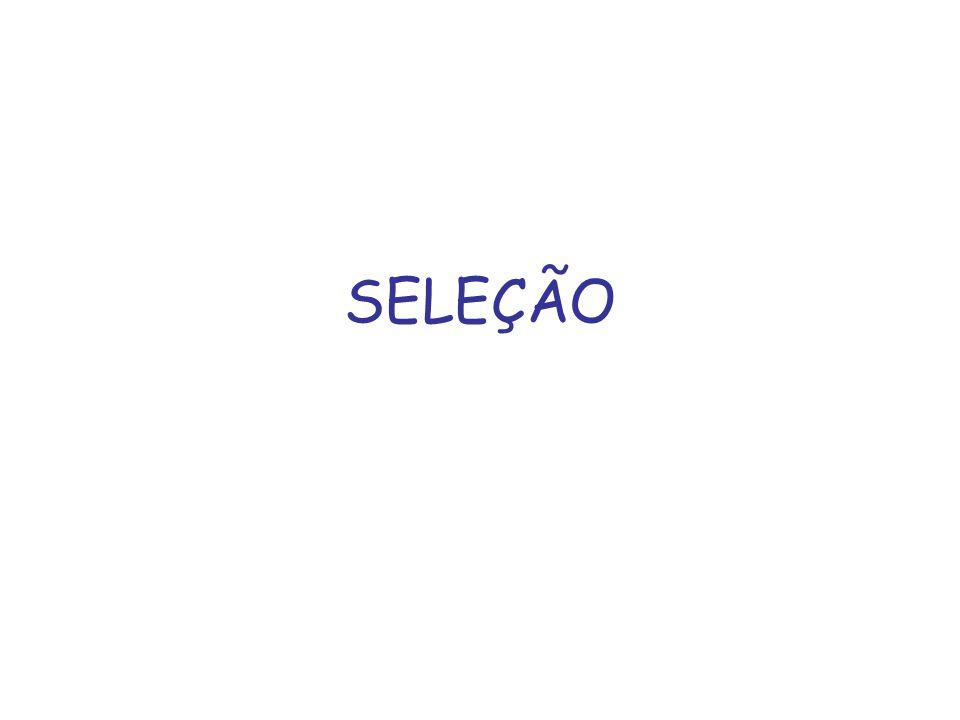 SELEÇÃO