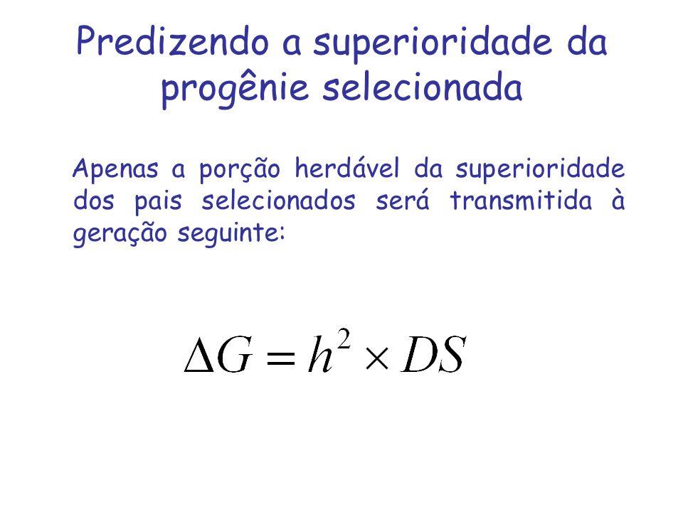 Predizendo a superioridade da progênie selecionada