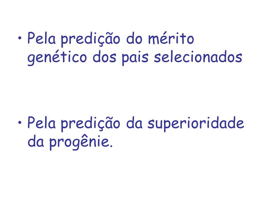 Pela predição do mérito genético dos pais selecionados
