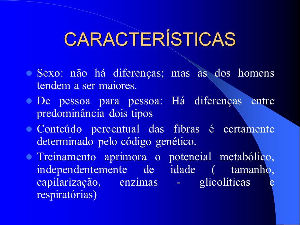 CARACTERÍSTICAS Sexo: não há diferenças; mas as dos homens tendem a ser maiores. De pessoa para pessoa: Há diferenças entre predominância dois tipos.