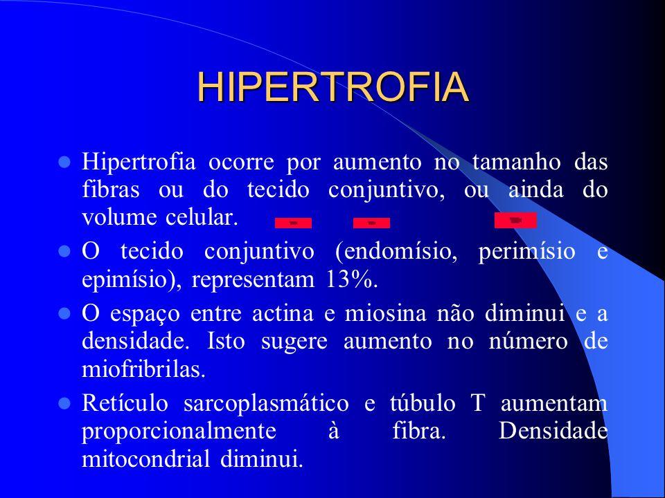 HIPERTROFIA Hipertrofia ocorre por aumento no tamanho das fibras ou do tecido conjuntivo, ou ainda do volume celular.
