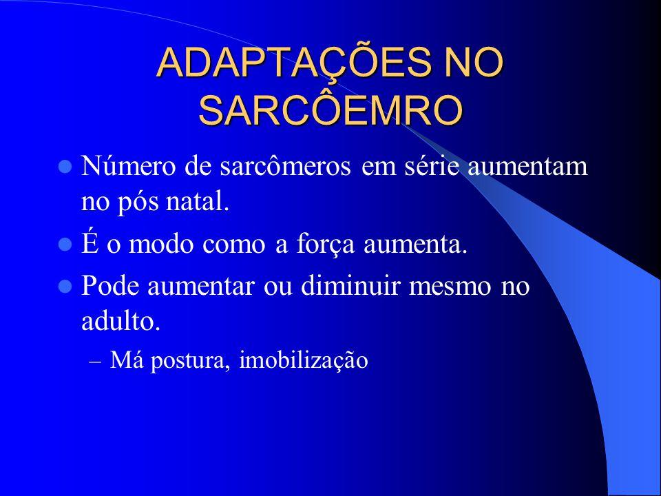 ADAPTAÇÕES NO SARCÔEMRO