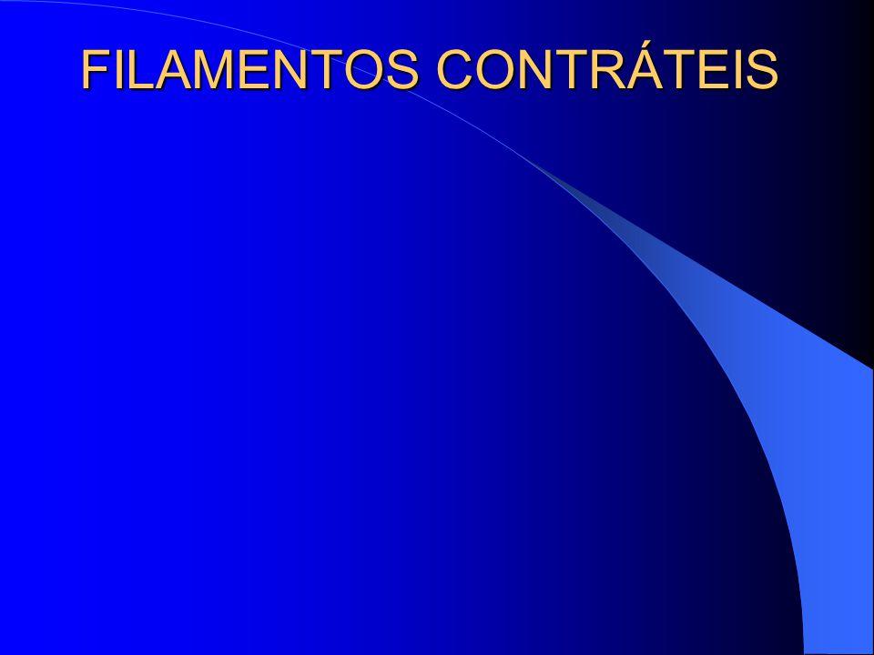 FILAMENTOS CONTRÁTEIS