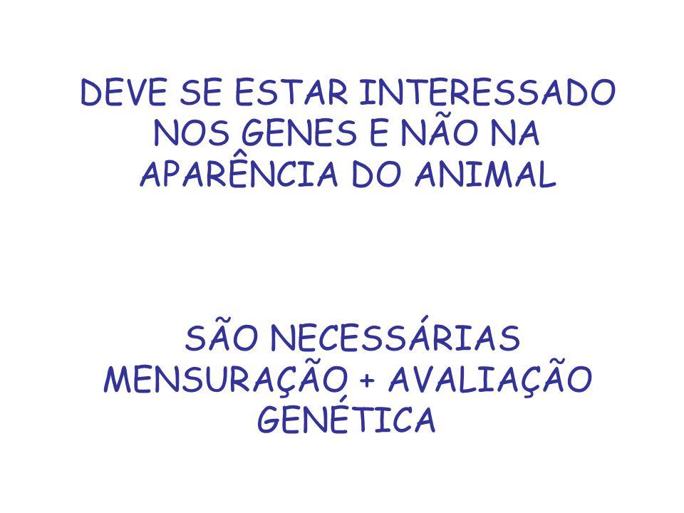 DEVE SE ESTAR INTERESSADO NOS GENES E NÃO NA APARÊNCIA DO ANIMAL
