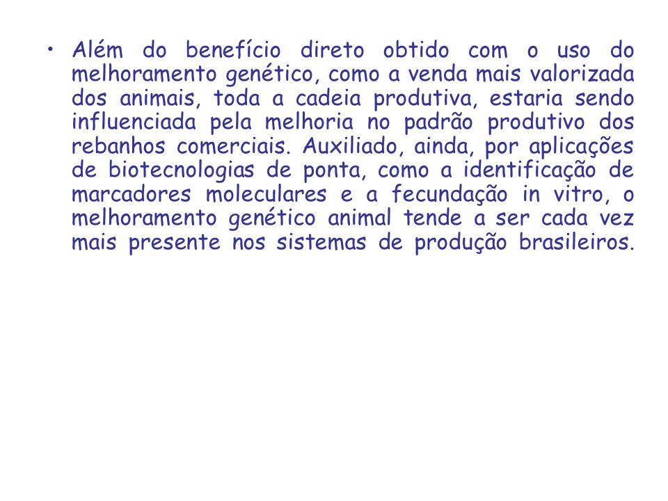 Além do benefício direto obtido com o uso do melhoramento genético, como a venda mais valorizada dos animais, toda a cadeia produtiva, estaria sendo influenciada pela melhoria no padrão produtivo dos rebanhos comerciais.