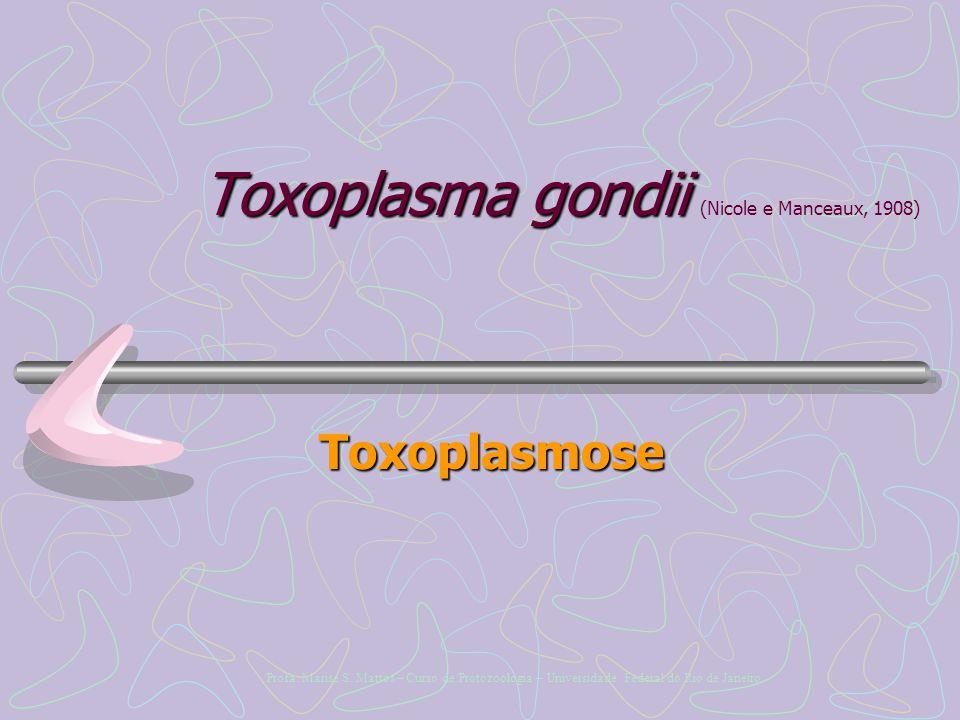 Toxoplasma gondii (Nicole e Manceaux, 1908)