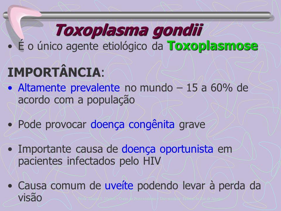 Toxoplasma gondii IMPORTÂNCIA: