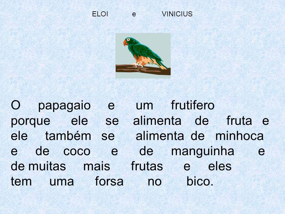ELOI e VINICIUS