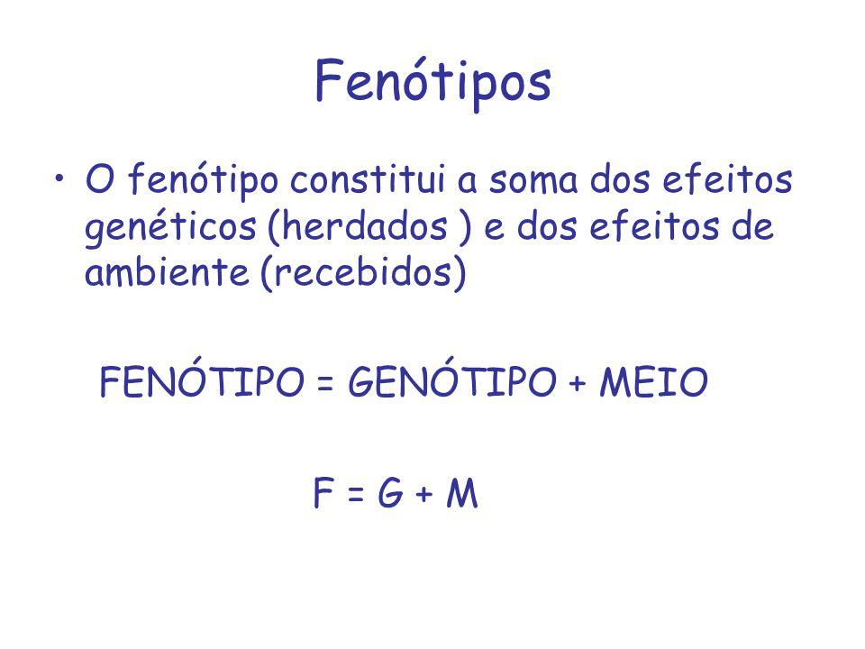 Fenótipos O fenótipo constitui a soma dos efeitos genéticos (herdados ) e dos efeitos de ambiente (recebidos)
