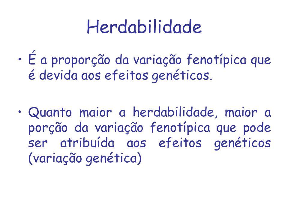 Herdabilidade É a proporção da variação fenotípica que é devida aos efeitos genéticos.