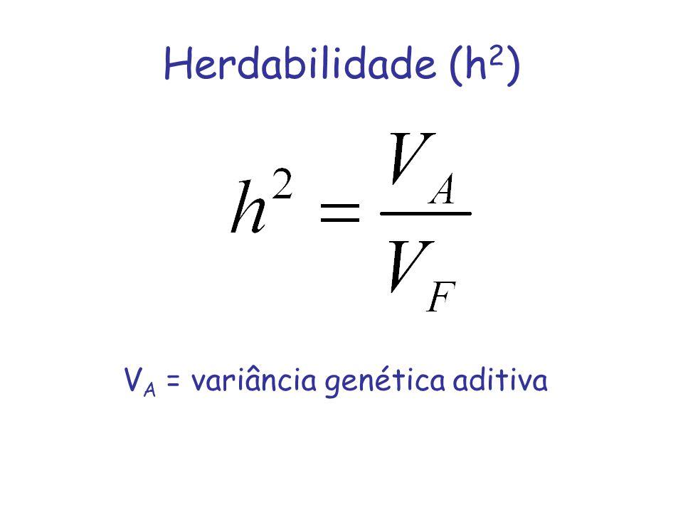Herdabilidade (h2) VA = variância genética aditiva