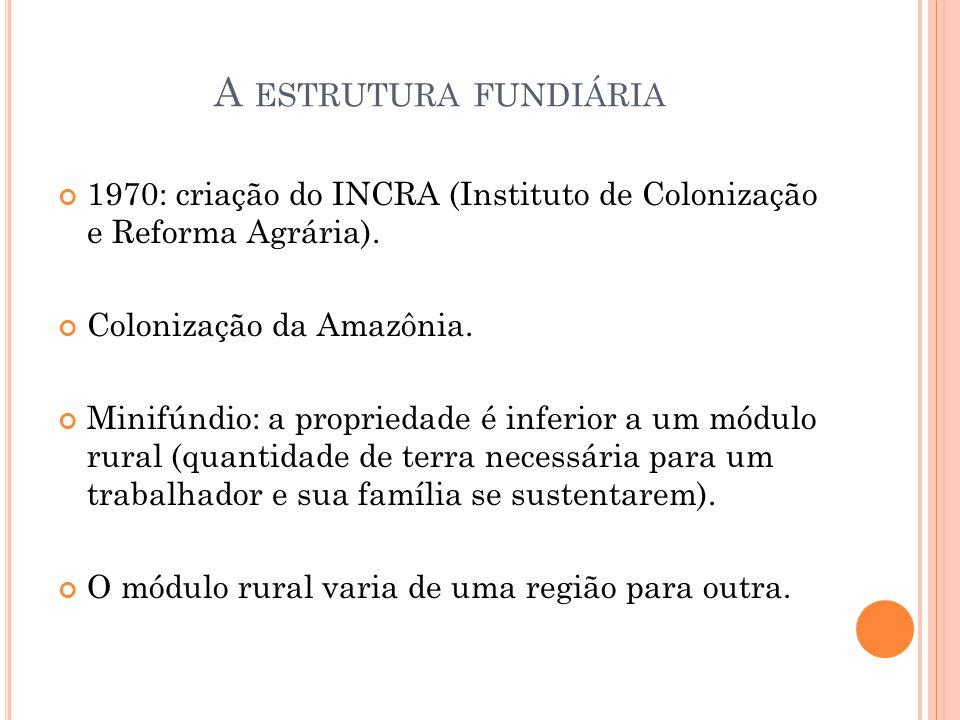 A estrutura fundiária 1970: criação do INCRA (Instituto de Colonização e Reforma Agrária). Colonização da Amazônia.