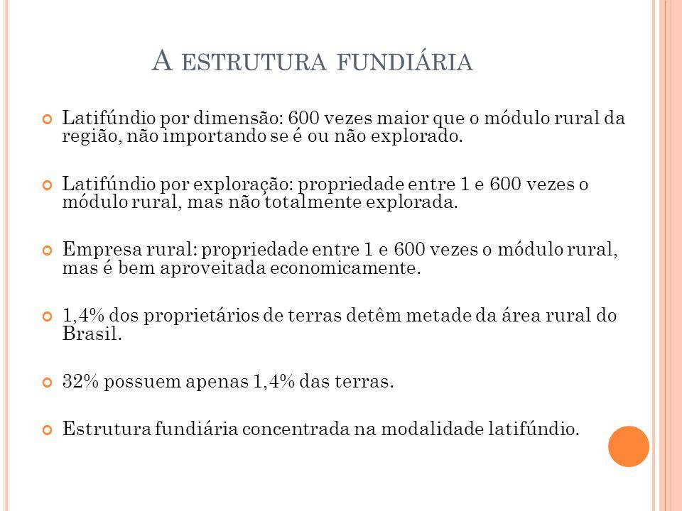 A estrutura fundiária Latifúndio por dimensão: 600 vezes maior que o módulo rural da região, não importando se é ou não explorado.