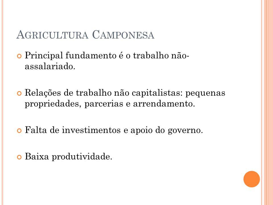 Agricultura Camponesa