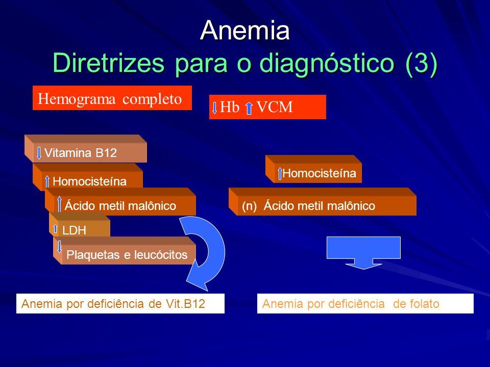 Anemia Diretrizes para o diagnóstico (3)