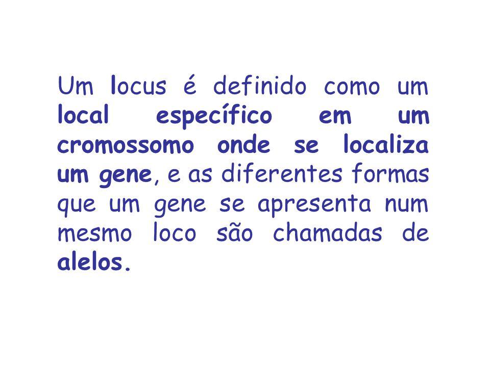 Um locus é definido como um local específico em um cromossomo onde se localiza um gene, e as diferentes formas que um gene se apresenta num mesmo loco são chamadas de alelos.