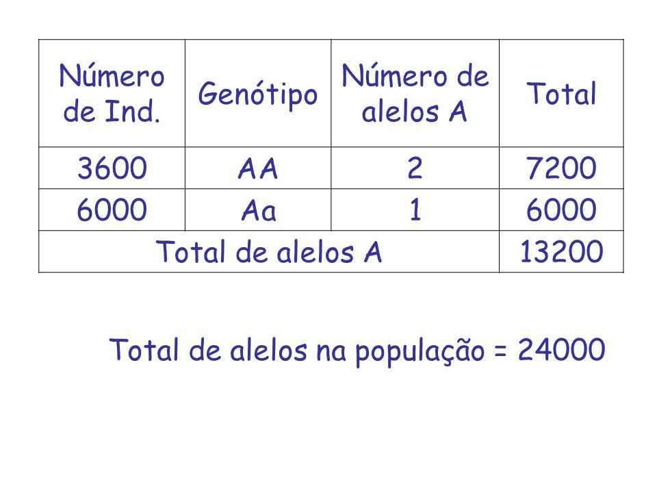 Número de Ind. Genótipo. Número de alelos A. Total. 3600. AA. 2. 7200. 6000. Aa. 1. Total de alelos A.