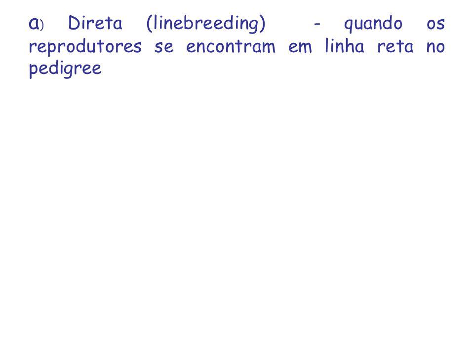 a) Direta (linebreeding) - quando os reprodutores se encontram em linha reta no pedigree