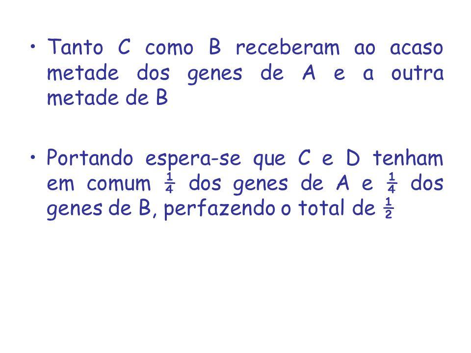 Tanto C como B receberam ao acaso metade dos genes de A e a outra metade de B