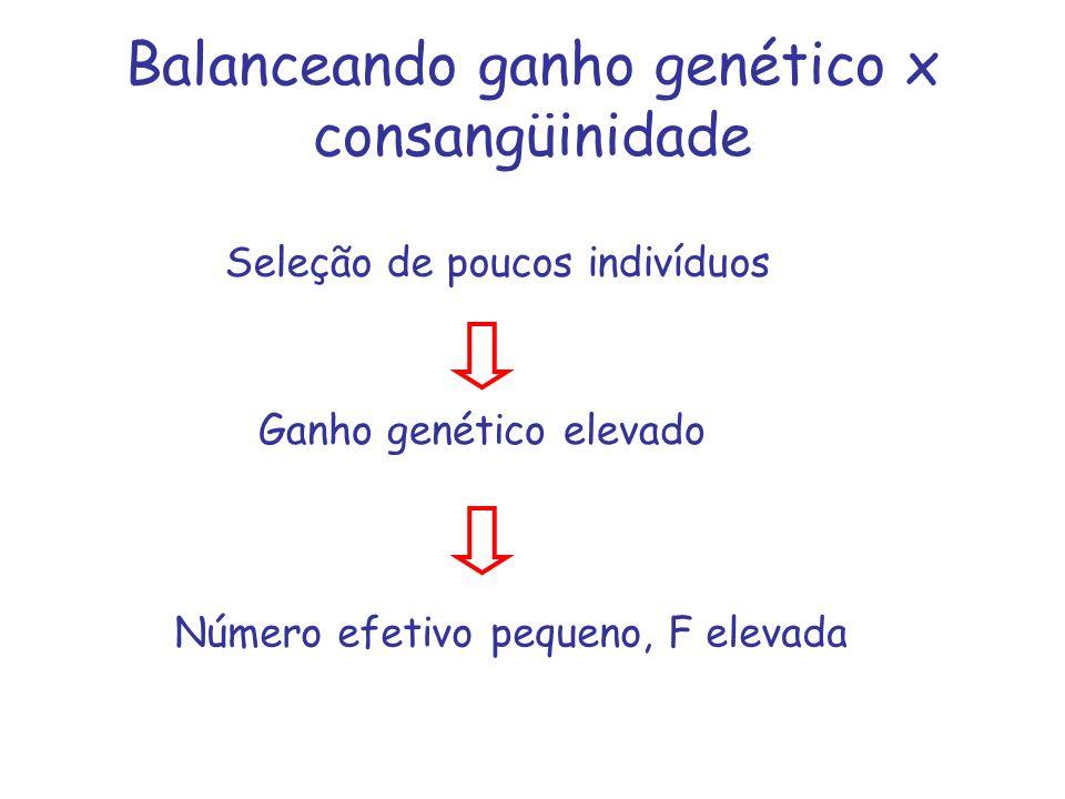 Balanceando ganho genético x consangüinidade
