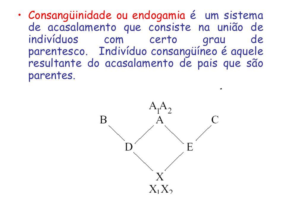 Consangüinidade ou endogamia é um sistema de acasalamento que consiste na união de indivíduos com certo grau de parentesco. Indivíduo consangüíneo é aquele resultante do acasalamento de pais que são parentes.
