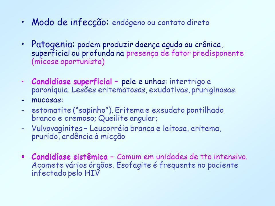 Modo de infecção: endógeno ou contato direto