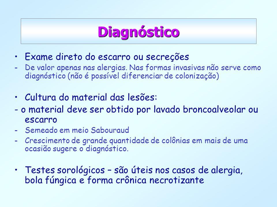Diagnóstico Exame direto do escarro ou secreções