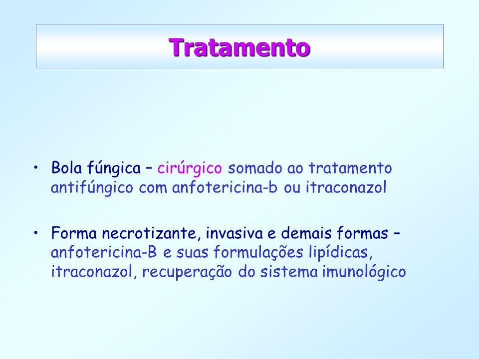 Tratamento Bola fúngica – cirúrgico somado ao tratamento antifúngico com anfotericina-b ou itraconazol.