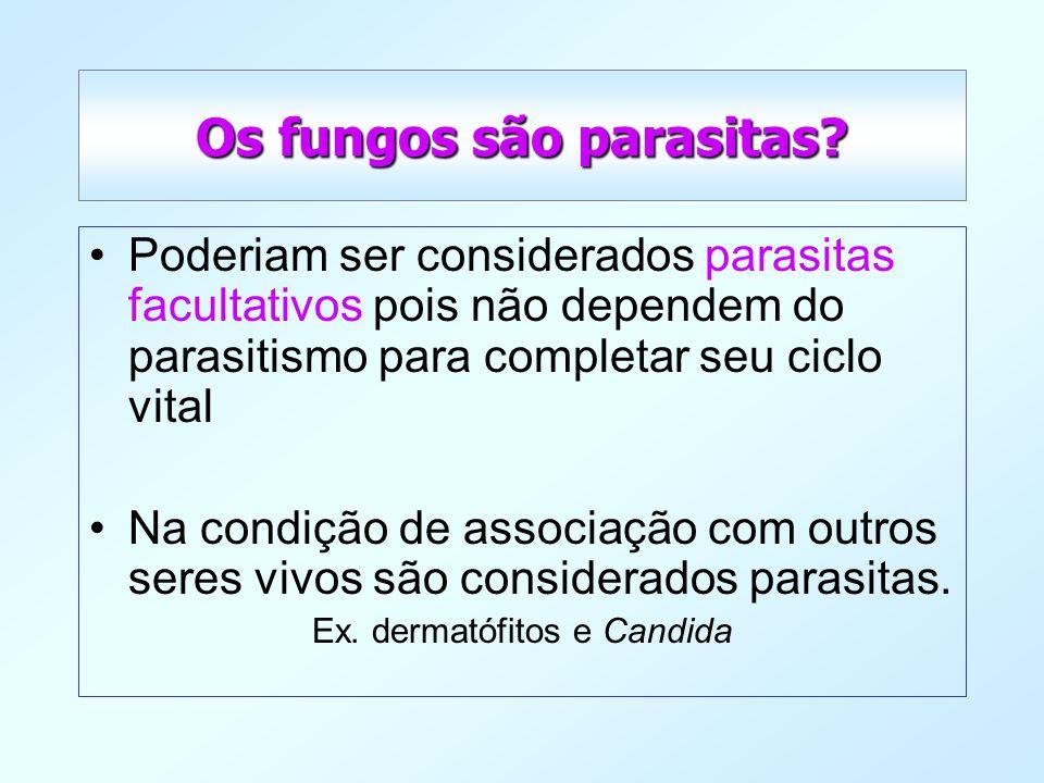 Os fungos são parasitas