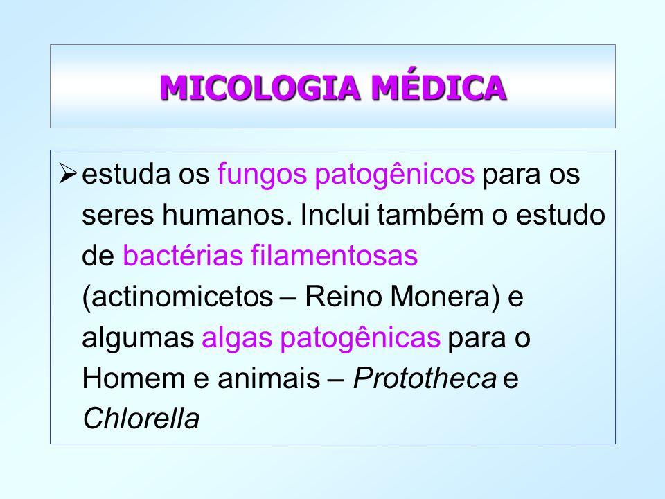 MICOLOGIA MÉDICA