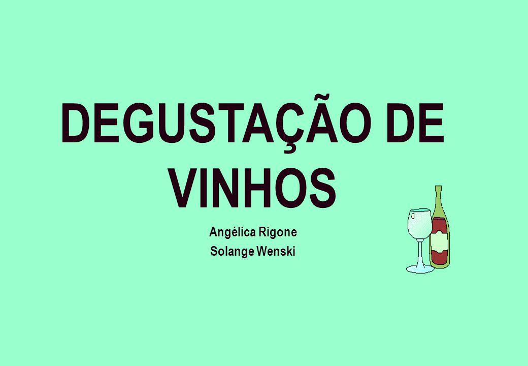 DEGUSTAÇÃO DE VINHOS Angélica Rigone Solange Wenski
