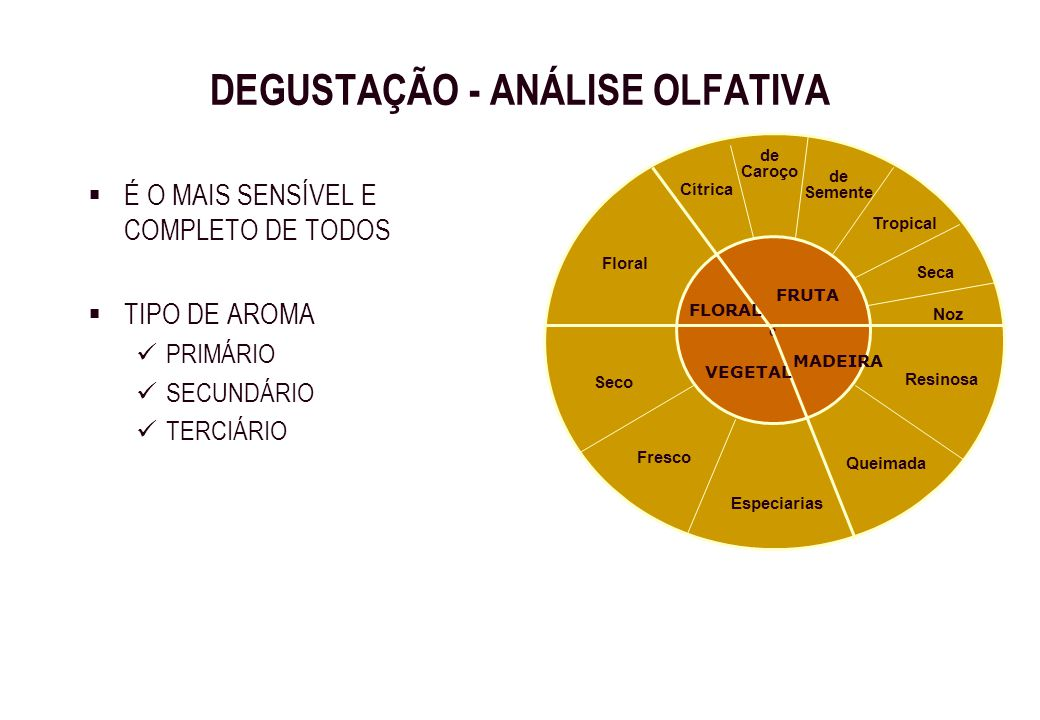 DEGUSTAÇÃO - ANÁLISE OLFATIVA