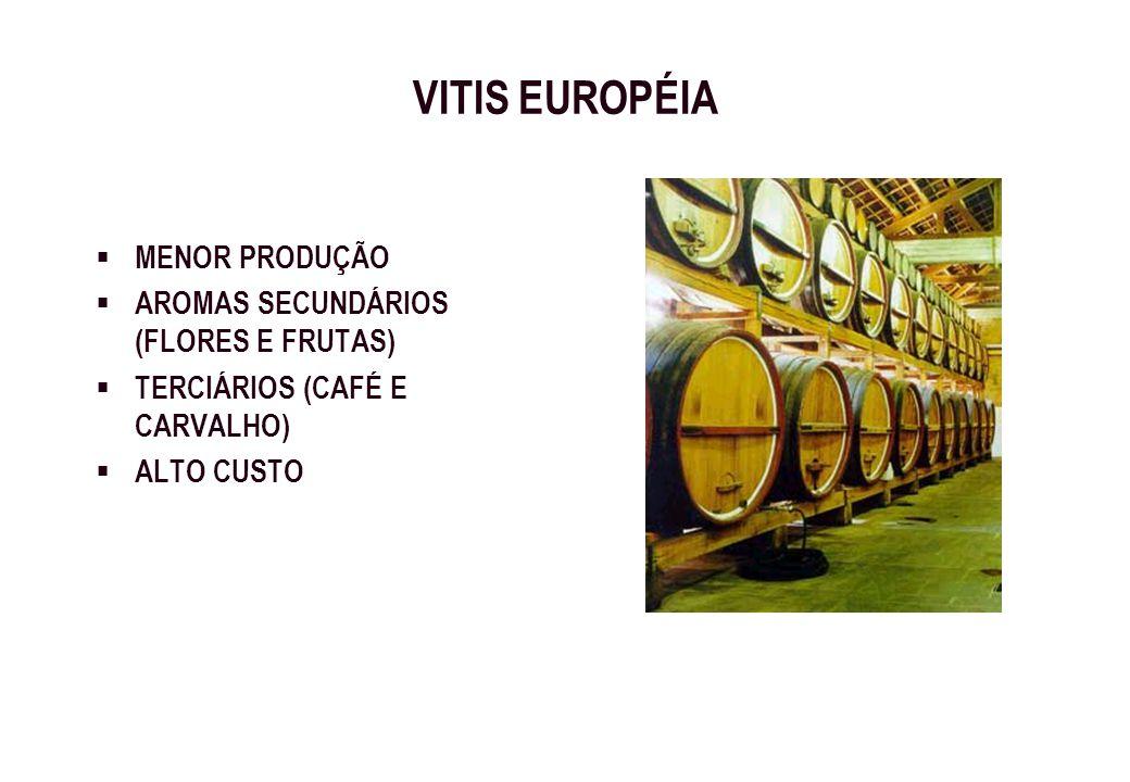 VITIS EUROPÉIA MENOR PRODUÇÃO AROMAS SECUNDÁRIOS (FLORES E FRUTAS)