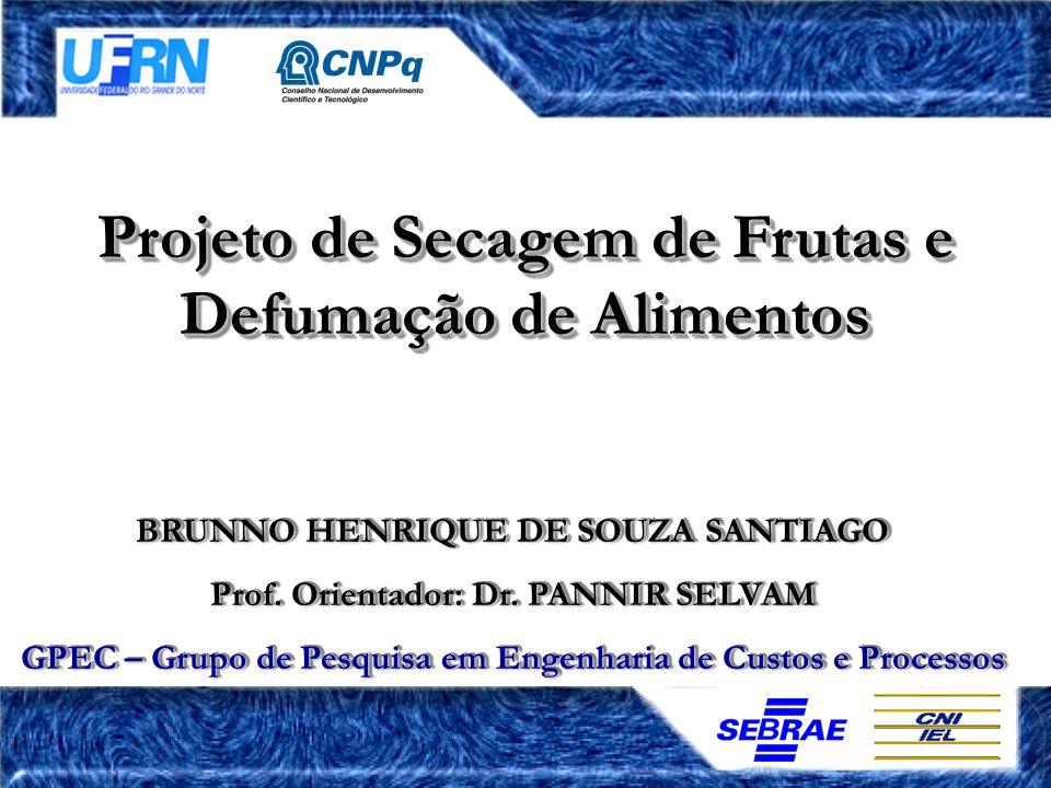 Projeto de Secagem de Frutas e Defumação de Alimentos