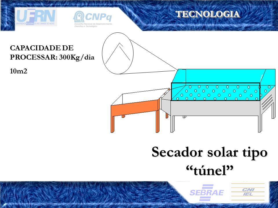 Secador solar tipo túnel