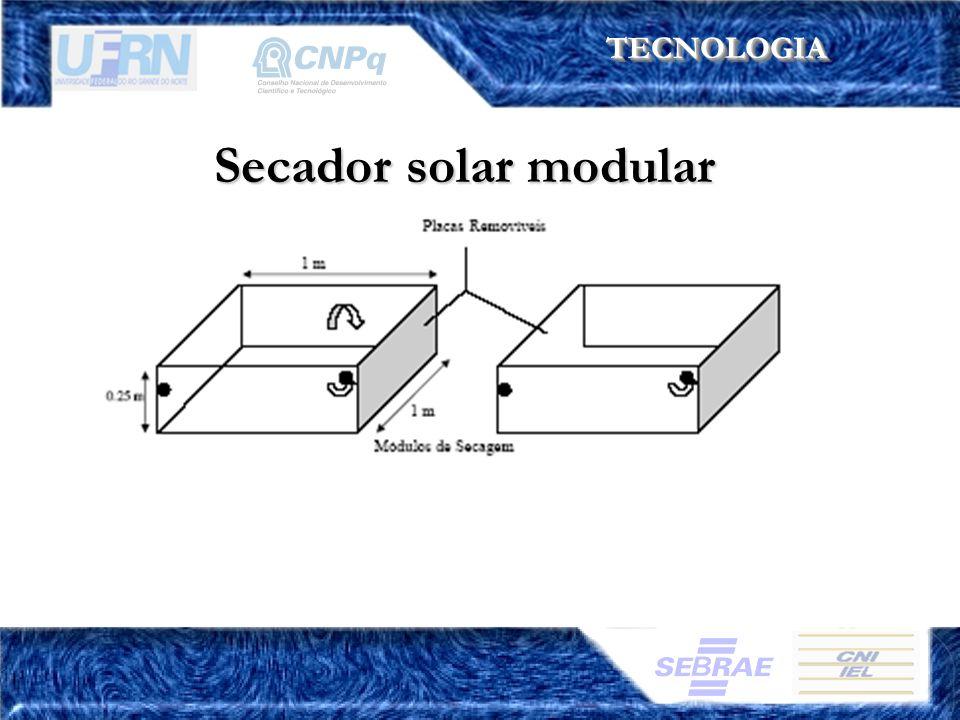 TECNOLOGIA Secador solar modular