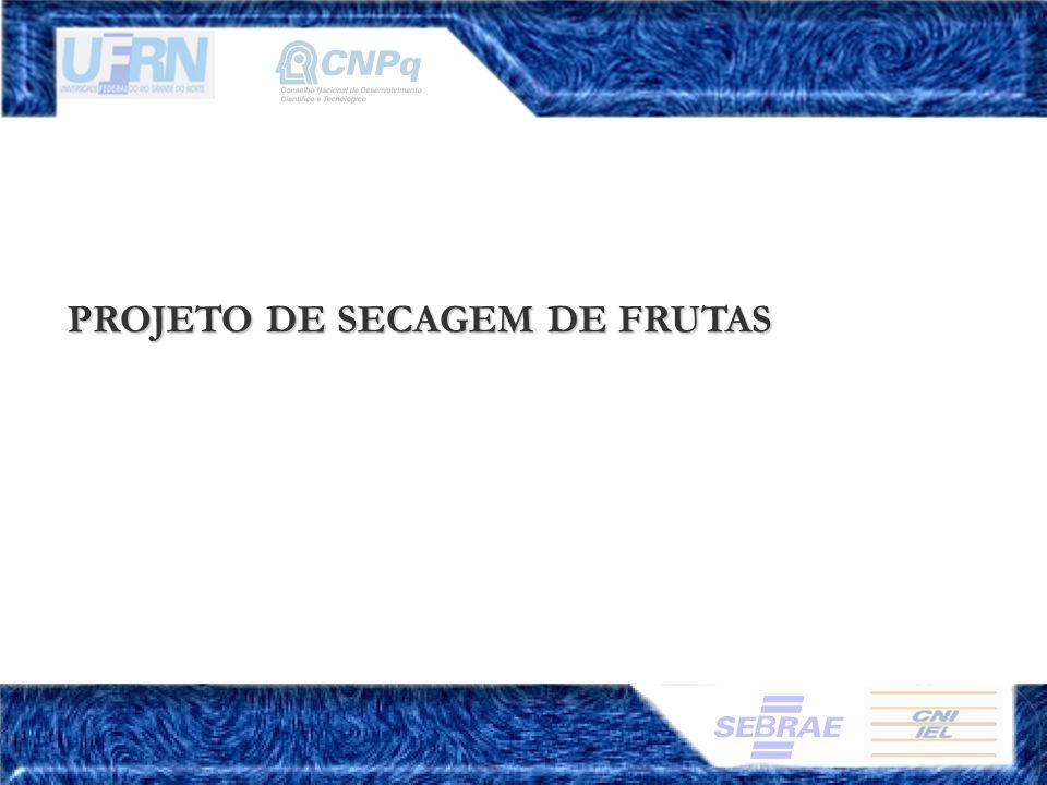 PROJETO DE SECAGEM DE FRUTAS