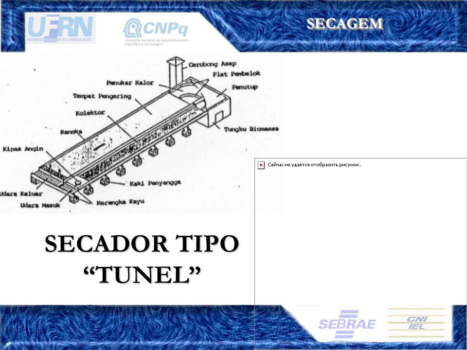 SECAGEM SECADOR TIPO TUNEL