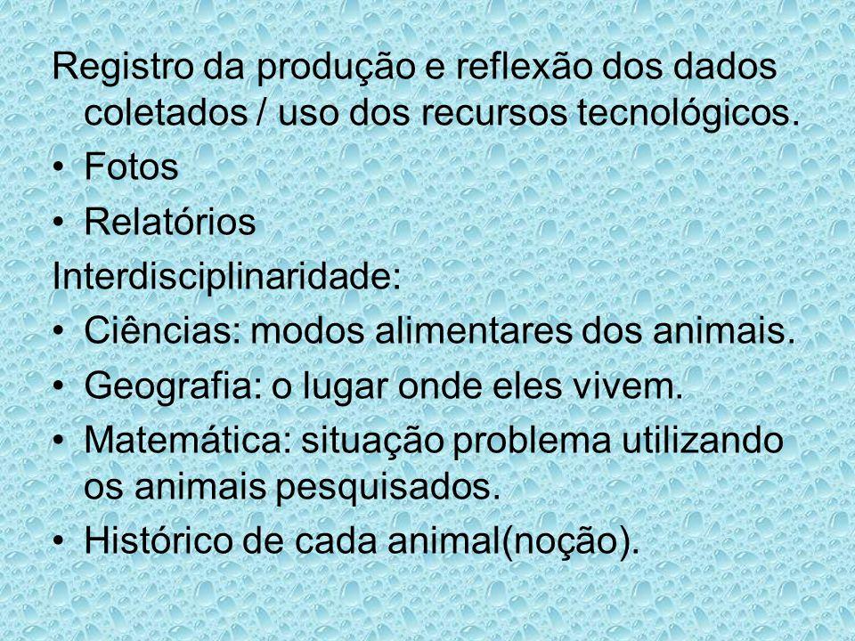 Registro da produção e reflexão dos dados coletados / uso dos recursos tecnológicos.