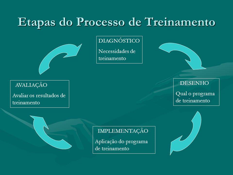 Etapas do Processo de Treinamento