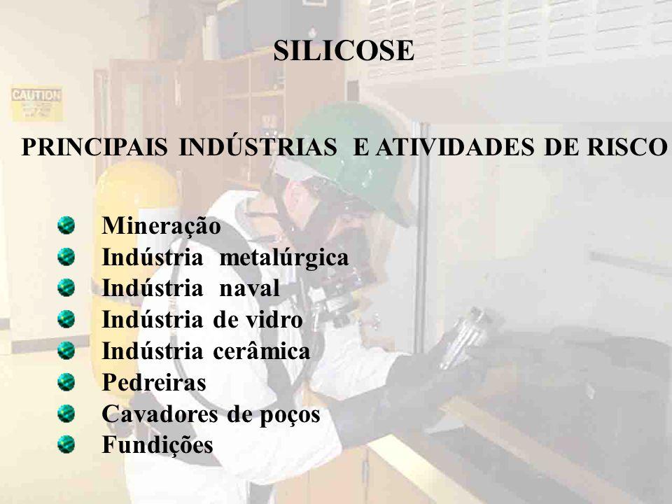 PRINCIPAIS INDÚSTRIAS E ATIVIDADES DE RISCO
